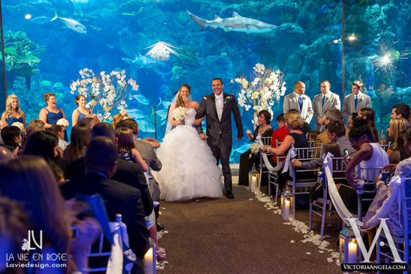 la-vie-en-rose-wedding-ceremony-crystal-chandelier-draping-petals-florida-aquarium-tampa