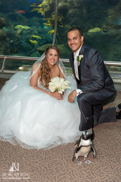 la-vie-en-rose-wedding-penguin-bride-groom-florida-aquarium-tampa