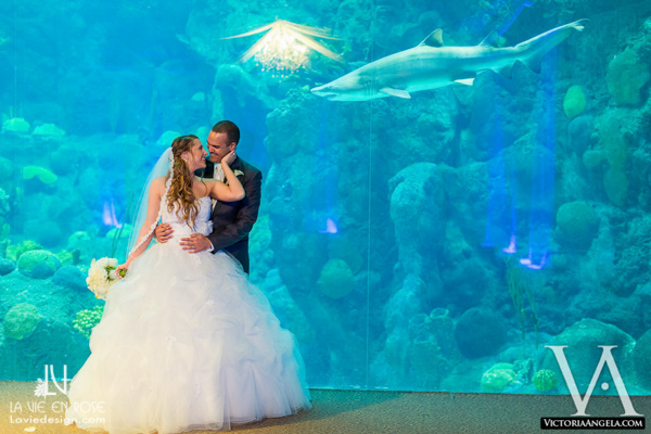 la-vie-en-rose-wedding-shark-bride-groom-florida-aquarium-tampa