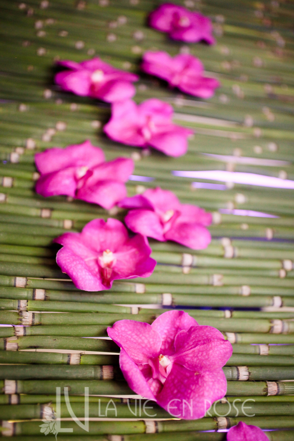la-vie-en-rose-knot-wedding-mixer-green-bamboo-backdrop-purple-orchid-1930-grand-room-tampa-florida